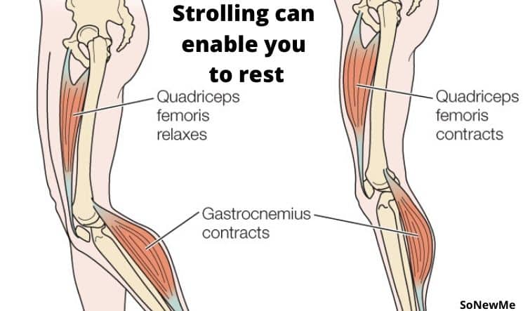 Strolling reinforces bones and muscles
