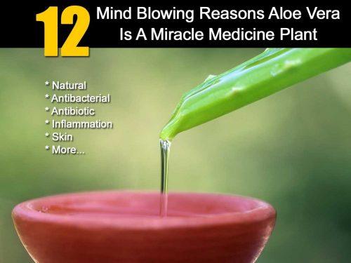 Aloe Vera Benefit